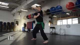 Shikellamy High School Young American Christa Beveridge performs Kung Fu