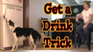 Get A Water (drink) Out Of The Refrigerator Dog Trick: 'how To' Back Chain Dog Tricks