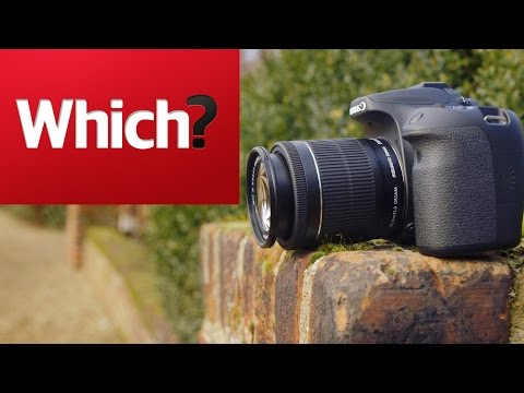 How to buy the best budget DSLR