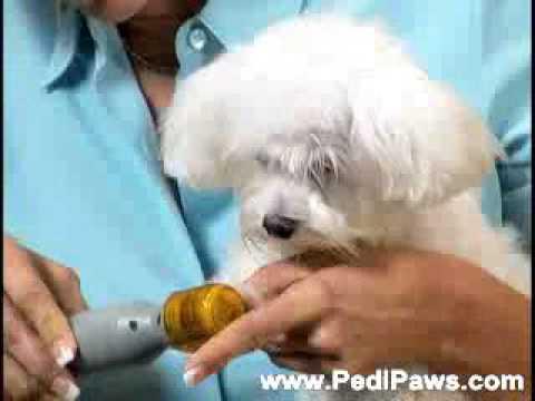 Професионална пила за домашни любимци – Pedi Paws TV31 11