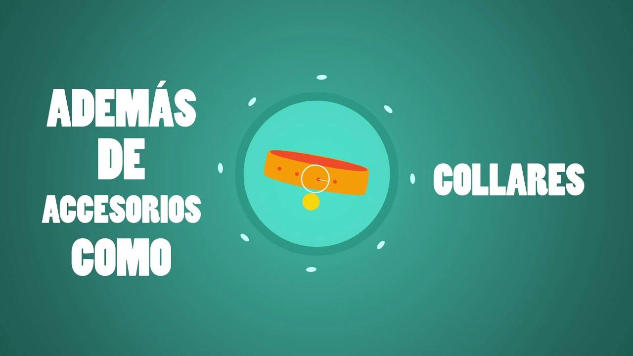 Croquetón 2015