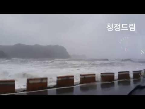 완도 자연그대로 청정드림 전복ㅣTyphoon soulic landing on bogildoㅣ台風がBogildoに上陸