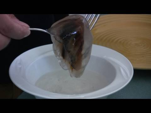 How to cook a jellyfish or fun ideas for a family vacation for How do you cook fish