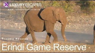 Erindi Game Reserve Namibia