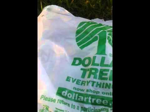 dog-haul-part-1-(dollar-tree)