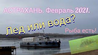 Плюс 10 Что со льдом в Астрахани Зимняя рыбалка или открытая вода 6 февраля 2021 г