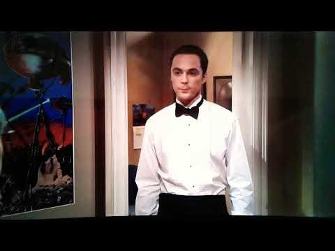 The Big Bang Theory/S08E08/Es Muss Liebe Sein