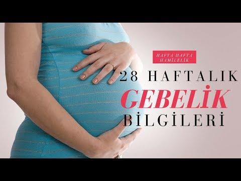 En Faydalı Hamilelik Rehberi: 28 Haftalık Gebelik Bilgileri
