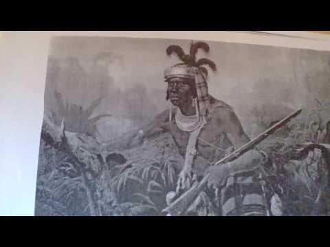 southeastern warrior billy bowlegs