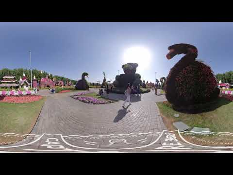 Explore Dubai Miracle Garden | Dubai in 360 by Real VR Studios | VR360° Travel Video
