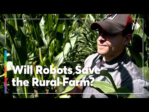 Nebraska: Where Technology Meets Traditional Agriculture | American Paycheck