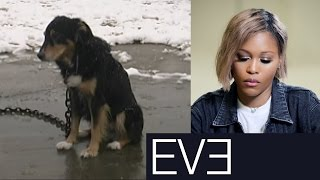 rapper-eve-sees-the-starved-abused-dogs-peta-helps