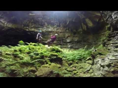 Fern Cave Kent