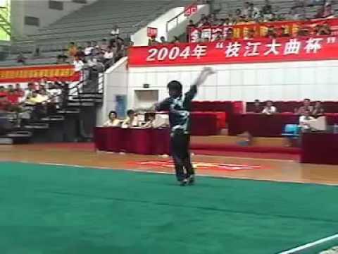 Kungfu Wushu style Chang Quan par Zhao Gun