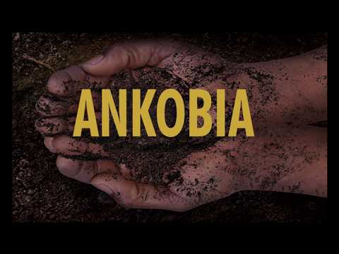 Ankobia at The National Arts Festival