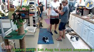FFRC Adoption of Zoolove 07-16-2018
