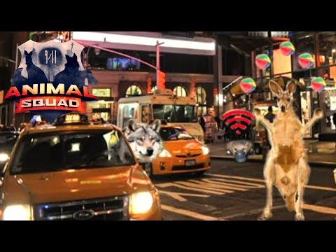 Pen & Paper: 9/11- Animal Squad XIII | Massenpanik am Timesquare