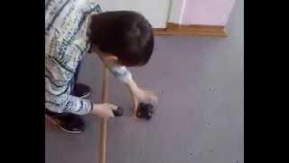 Робот из мышки самодельный
