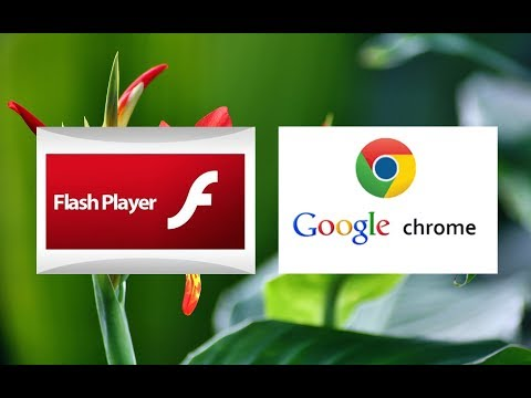New Fix For Disabled & Blocked Adobe Flash Player For Google  Chrome New Version Users