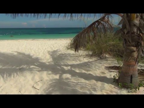 Sweetings Cay and Taino Beach of Grand Bahamas Island