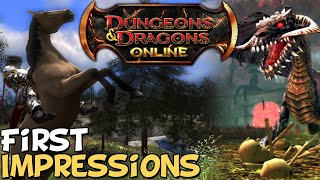 "Dungeons & Dragons Online First Impressions ""Is It Worth Playing?"""