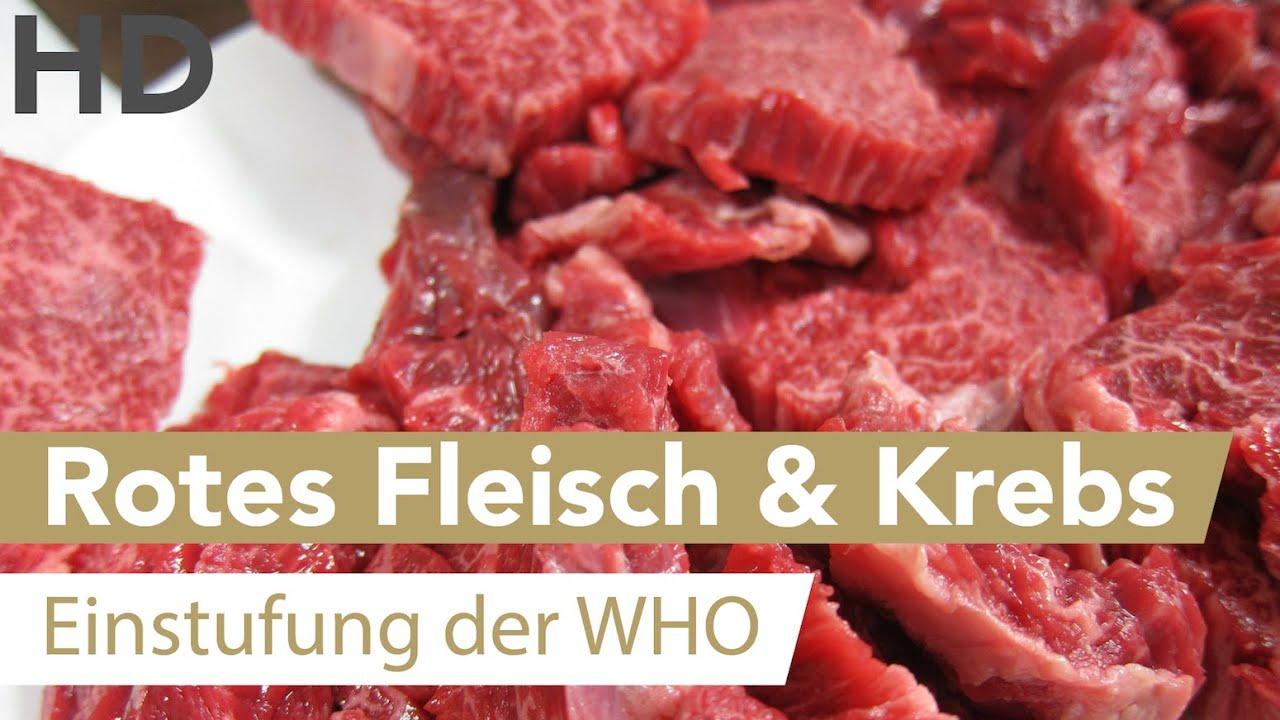 Fleisch & Krebs ?// Rotes Fleisch krebserregend, Fleischkonsum