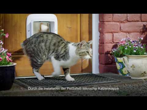 Wir stellen Ihnen die PetSafe® Mikrochip Katzenklappe vor
