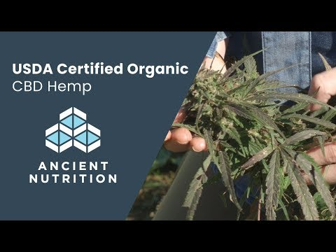 Why Organic Matters  Dr Josh Axe