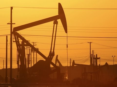 Islamic Leaders Call for the End of Fossil Fuels