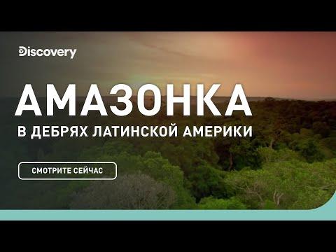 Амазонка | В дебрях Латинской Америки | Discovery Channel - Видео онлайн