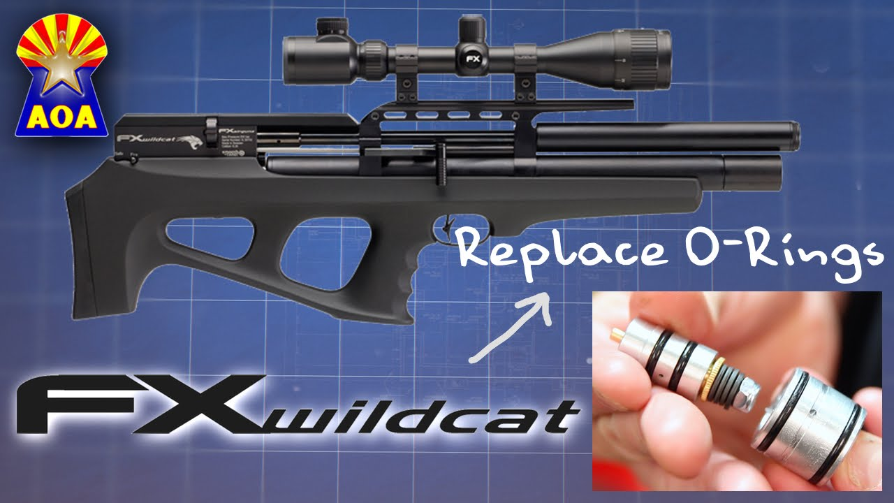 FX Wildcat O-Ring Repair - YouTube
