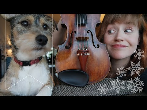 Bruno the dog | a Christmas sing-along