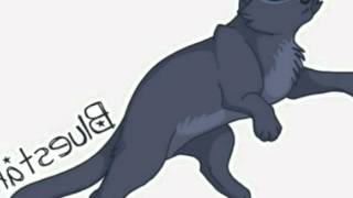 Коты - Воители : Грозовое племя  (часть 1)