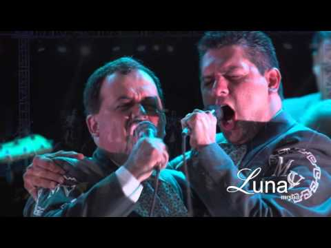 Mariachi Vargas live (Rezare)