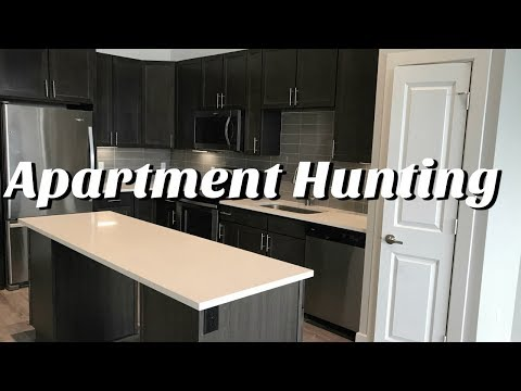 Apartment Hunting VLOG  2018  Apartment Hunting in Austin Texas Brittany Daniel