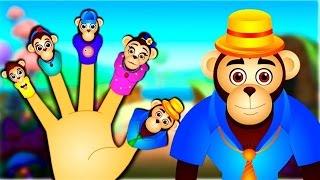 Chimpanzee Finger Family   Animal Finger Family Songs   Nursery Rhymes For Children