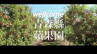 会社名:頂好スーパー商品名:青森リンゴ.