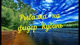 Рыбалка на фидер на реке Кубань Жор ЛЕЩЕЙ отличный улов Краснодар