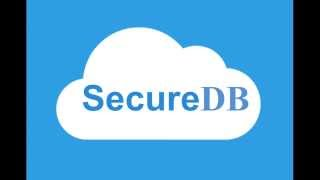 SecureDB - A Secure Query Processing System in the Cloud