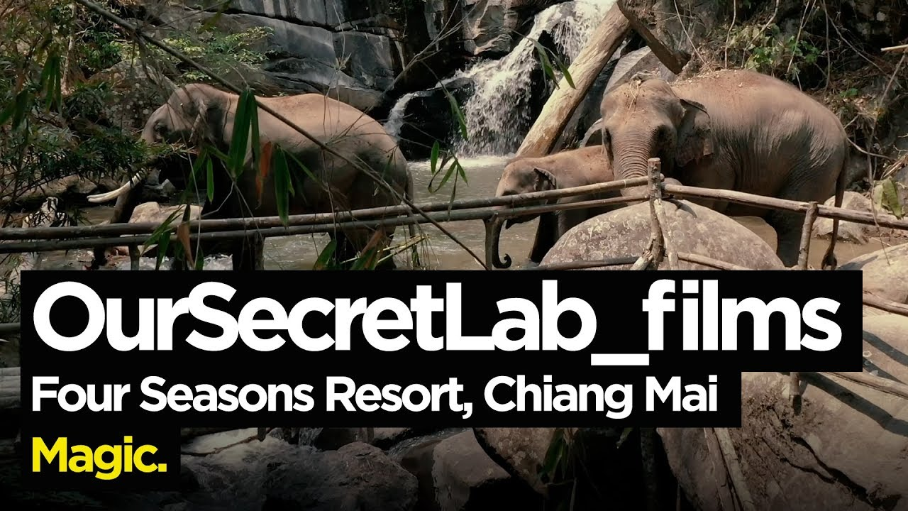 Four Seasons Resort, Chiang Mai Cinematic Review (featuring elephants, hot air balloons and more!)