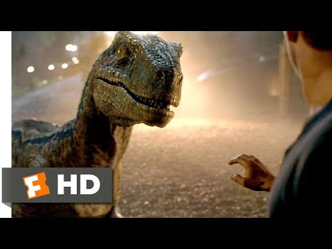 Jurassic World: Fallen Kingdom (2018) - Goodbye, Blue Scene (9/10) | Movieclips