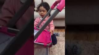 Обзор коляски