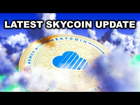 LATEST From Skycoin (SKY) - August 2020 Interview With Synth