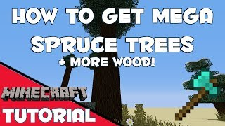How To Get Mega Spruce Trees & Multiply Your Wood Supply - Minecraft 1.7.2
