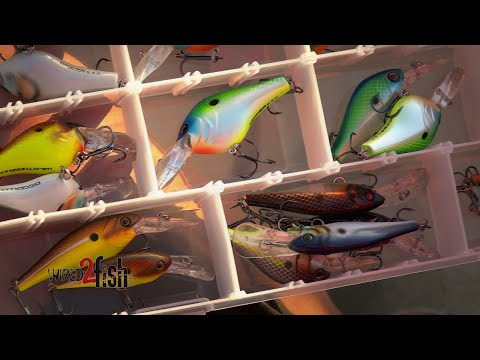 A Look at New Berkley Crankbait Fishing Designs