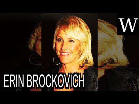ERIN BROCKOVICH - WikiVidi Documentary
