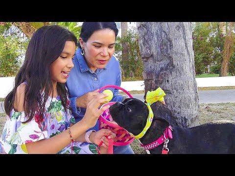 Buscando PREMIOS con la BEBA | TV ANA EMILIA
