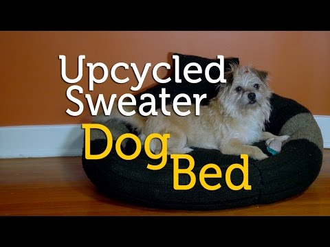 upcycle-an-old-sweater-into-a-dog-bed-|-diy