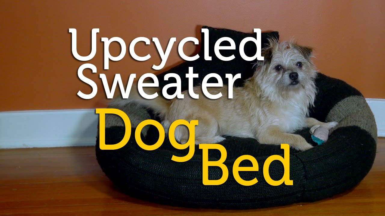 Upcycle an Old Sweater into a Dog Bed