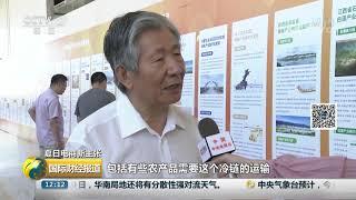 [国际财经报道]夏日电商新主张 电子商务消费新势力 电商下沉成趋势| CCTV财经